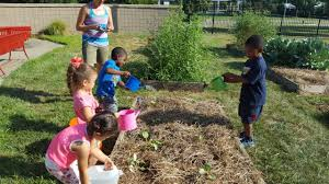 to turn a schoolyard into preparing your schoolyard garden for fall planting