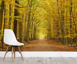 autumn pathway tree wallpaper wall mural forest wallpaper autumn pathway tree wallpaper wall mural