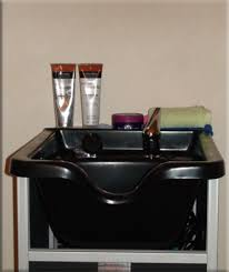 salon sink for home shear trends llc mobile hair salon