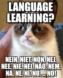 No Grumpy Cat Meme - grumpy cat says no in over 36 languages grumpy cat meme http