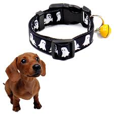 Dog Skeleton Halloween Online Get Cheap Halloween Dog Collar Aliexpress Com Alibaba Group