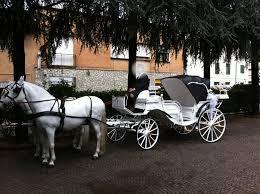 bianchi carrozze noleggio carrozza matrimoni affitto carrozza con cavalli