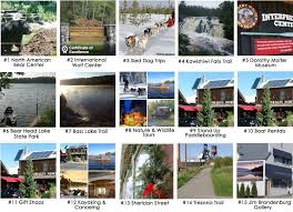 Minnesota where to travel in march images Top 15 things to do in ely according to tripadvisor timber wolf jpg
