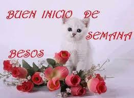 imagenes de feliz inicio de semana con rosas buen inicio de semana besos y rosas para ti 327 imágenes dias de