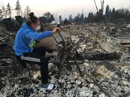 California Wildfire Cat by California Woman Puts Dog In Duffel Bag Flees Wildfires On Her Bike