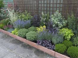 best 10 plants for a small container garden amazing backyard