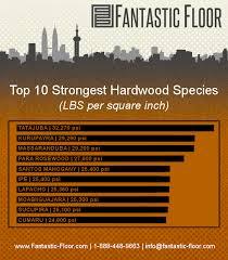 fantastic floor hardwood strength which species is best