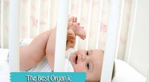 organic crib mattress cover buyer u0027s guide and top product reviews