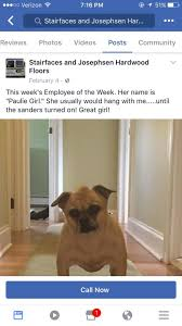 business owner awards his clients pets with hilarious distinction