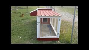 raising urban chickens back yard chicken coop youtube
