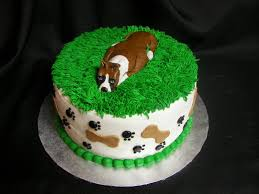 boxer dog health questions boxer dog birthdays the daily boxer
