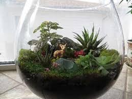 fun with flora fauna fungi u0026 food make a miniature world