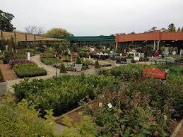 flower power in glenhaven sydney nsw gardeners truelocal
