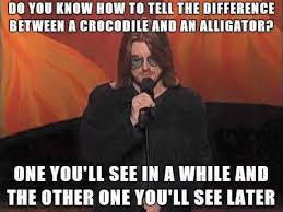 Mitch Hedberg Memes - the difference between an alligator and a crocodile fun pictures