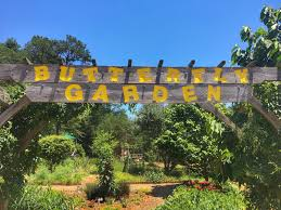 backyard farming butterfly garden resources