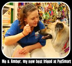 Petsmart Cashier Pay Can You Wear Flip Flops To Bed Nikitaland