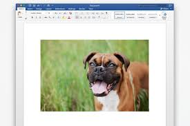 working with images in microsoft word
