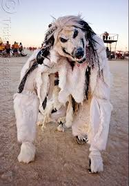 Wolf Costume 12 Best Lobos Images On Pinterest Wolf Costume Costume Ideas