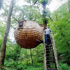 Crazy Houses Crazy Tree Houses Home Design