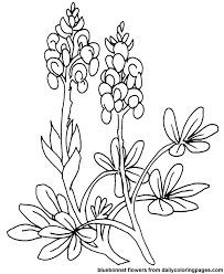 flower page printable coloring sheets free coloring pages for