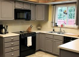 Diy Kitchen Cabinet Kits Diy Kitchen Cabinet Kits Alkamediacom Pelauts