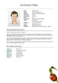 Resume Curriculum Vitae Samples by Free Resume Templates U2013 Ladybug Short U2013 Download U2013 Comoto