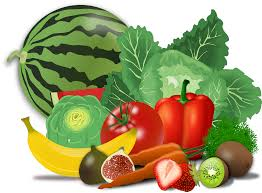 drawing of healthy food of fruit and vegetables free image