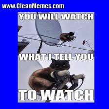 Clean Funny Memes - cat memes clean memes the best the most online