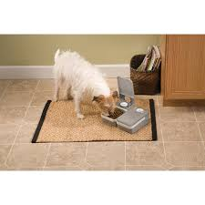 Petmate Indigo 2 Meal Automatic Pet Feeder By Petsafe Pfd11 13706