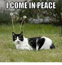 Peace Memes - 25 best memes about i come in peace i come in peace memes