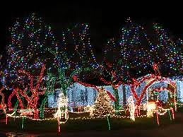drive thru christmas light displays near me going on adventures hill country christmas lights provides