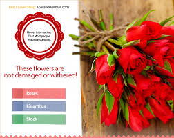Flowers Information - flower delivery to south korea korea flower mall same day