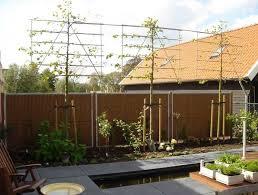garten sichtschutz ideen garten sichtschutz ideen mit ehrfürchtig horizontale bambus