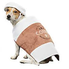 Xxl Halloween Costumes Dog Costumes Shop Small U0026 Large Dog Costumes Petsmart