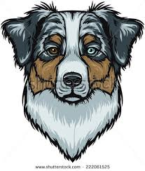 commercials with australian shepherds shepherds free vector download 8 free vector for commercial use