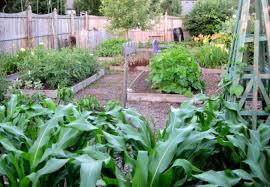 Home Design Online 3d 3d Garden Design Online Shonila Com