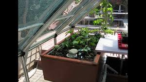 backyard aquaponics youtube outdoor furniture design and ideas