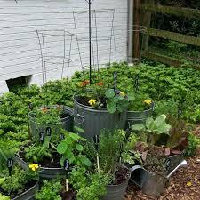 galvanized garden repurposed container planting hometalk