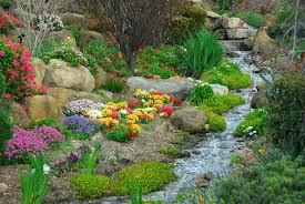 Best Plants For Rock Gardens Flowers For Rock Garden Best Plants For Rock Gardens Flowers Used