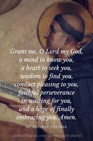 Quotes On Gods Love by Best 25 Thomas Aquinas Quotes Ideas On Pinterest St Thomas