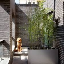 sch co balkone balkone aus stahl kosten terrasse hause dekoration ideen