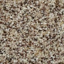 Home Decorators Carpet Home Decorators Collection Carpet Sample Captivating Color