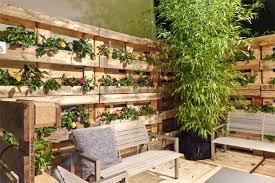 garten sichtschutz ideen balkon sichtschutz mit vertikalem garten gnstig effektiv garten