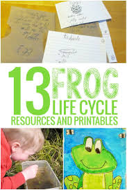 13 frog life cycle resources and printables teach junkie