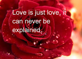 best happy valentines day quotes for him quotes wishes images