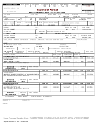 theft report form template mock report word templets