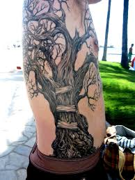 tree tattoos for from seattle my eye