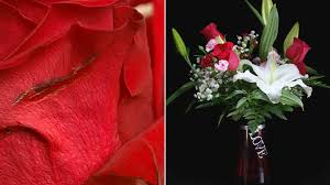 get flowers delivered flower delivery services you may not get what you pay for