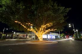 downtown caloundra gets into the festive spirit with festival of