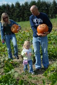 pick your own pumpkin u2014 country barn